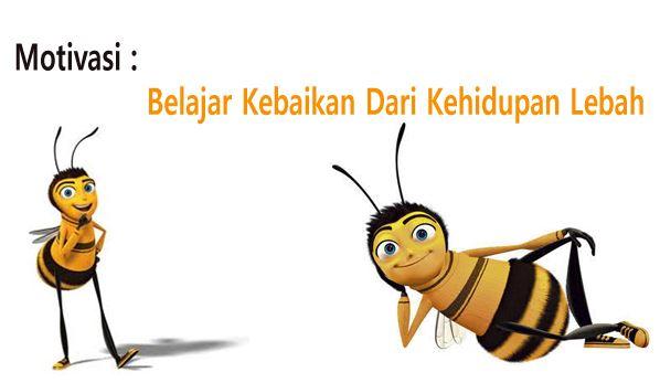 Belajar Kebaikan Dari Kehidupan Lebah