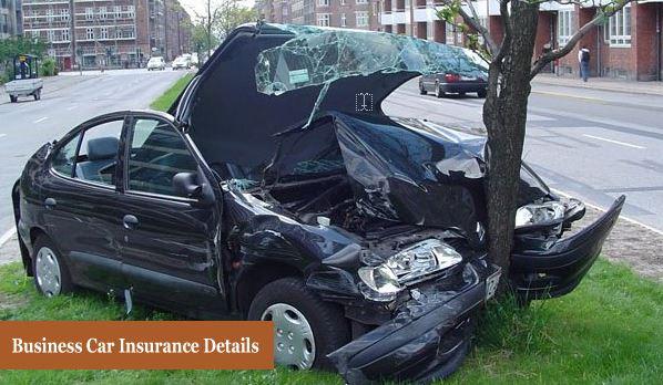 Business Car Insurance Details
