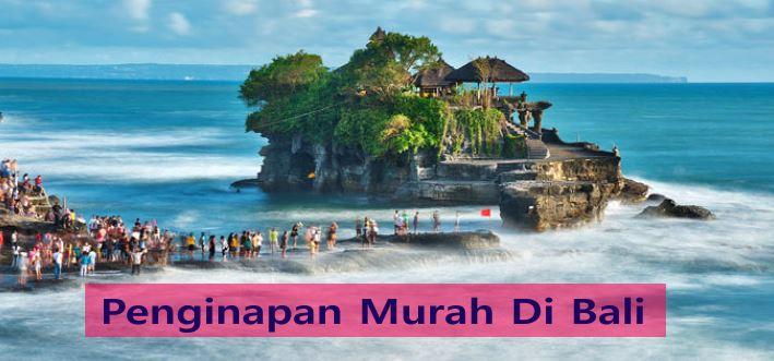 Penginapan Murah Di Bali Cuma Rp 40 Ribu Semalam