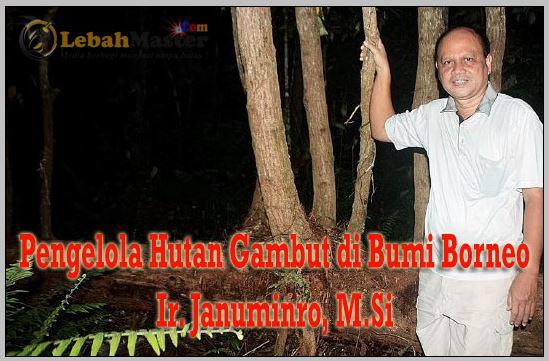 Januminro - Pengelola Hutan Kalimantan