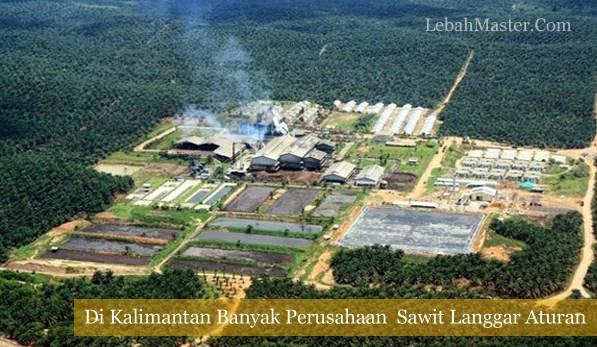 Perusahaan Sawit Kalimantan