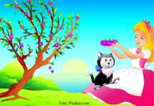 Dampak Film Kartun Terhdap Pendidikan Anak